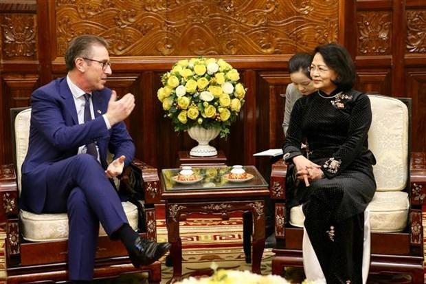 越南国家副主席会见爱尔兰全球风能与太阳能公司执行总裁 hinh anh 1