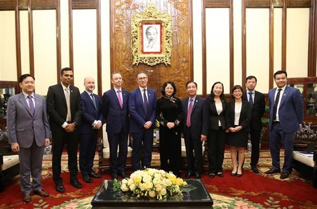 越南国家副主席会见爱尔兰全球风能与太阳能公司执行总裁 hinh anh 2