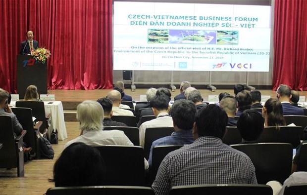 越南与捷克推动各领域的合作 hinh anh 1