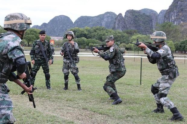 东盟与8个伙伴国的反恐实地演习圆满结束 hinh anh 1