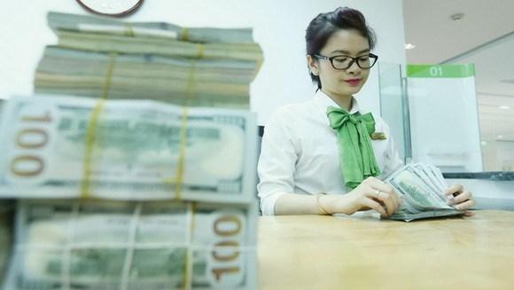 世行: 2019年越南侨汇收入达约167亿美元 hinh anh 1