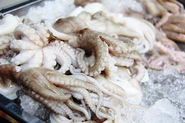 越南墨鱼与章鱼深受美国市场的青睐 hinh anh 1