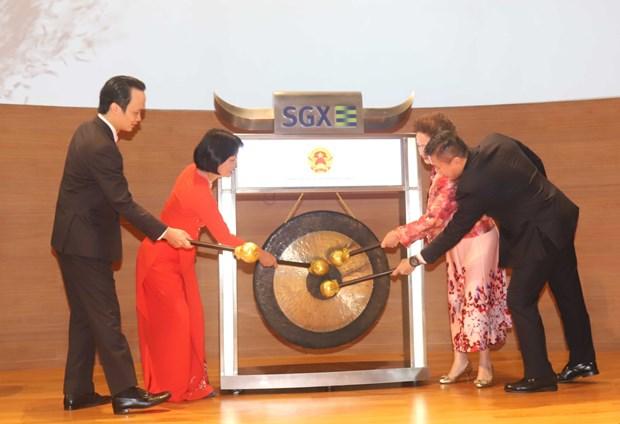 越南和新加坡企业加强沟通对接 hinh anh 2