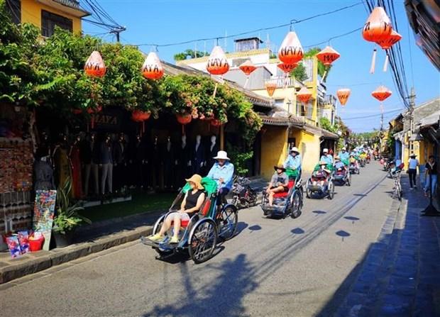 11月越南接待国际游客总量刷新纪录 hinh anh 1