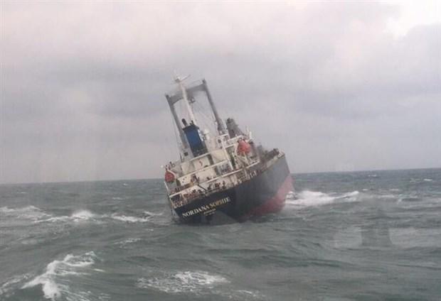 越南职能机关成功救助海上遇险的18名外国船员 hinh anh 1