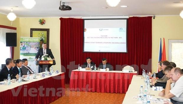 加大贸易促进力度 推动越南与捷克经济合作发展 hinh anh 1