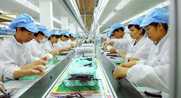 日本为越南劳工提供越南语咨询服务 hinh anh 2
