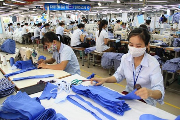 2019年越南纺织服装业增长率可达7.55% hinh anh 2