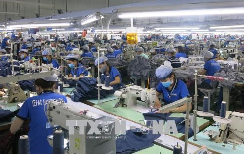 2019年越南纺织服装业增长率可达7.55% hinh anh 1