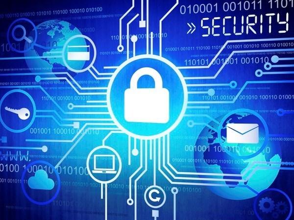 确保网络空间信息安全是每一个国家的必要工作 hinh anh 1