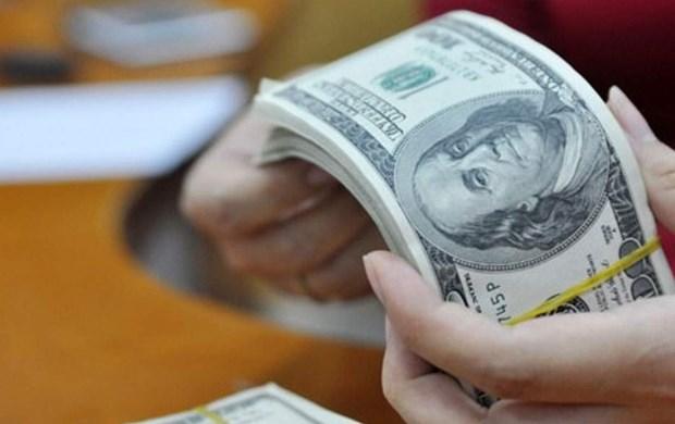 12月3日越盾对美元汇率中间价下降1越盾 hinh anh 1