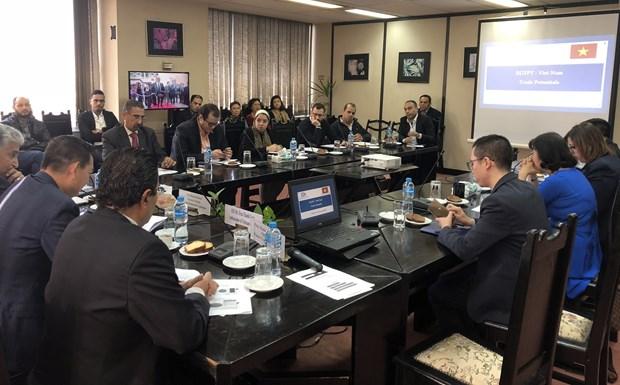 越南与埃及加强对接扩大双向投资贸易往来 hinh anh 1