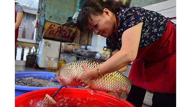 """""""河内古街的红烧鱼""""中的河城古文化 hinh anh 2"""