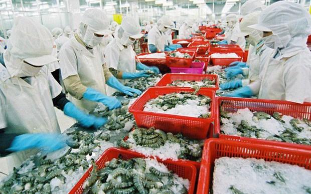 今年越南虾类产品出口额可下降4.4% hinh anh 1