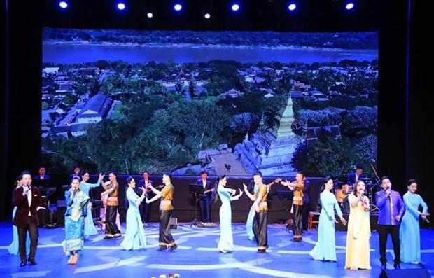 2019年越南文化周在老挝万象举行 hinh anh 1
