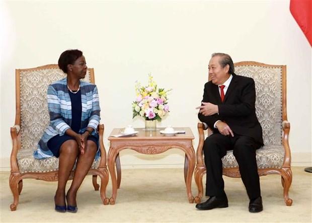 张和平副总理:越南不断为世界和平、安全与发展做出贡献 hinh anh 1