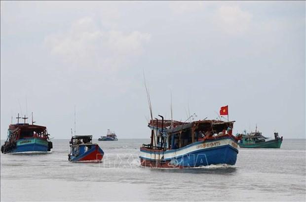 越南落实1982年《联合国海洋法公约》25周年:越南对海洋岛屿的保护、管理以及发展海洋经济(第二期) hinh anh 2