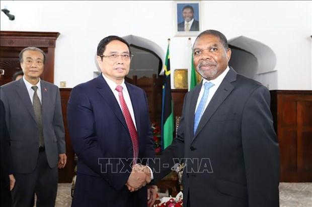 越南共产党高级代表团对坦桑尼亚进行工作访问 hinh anh 1