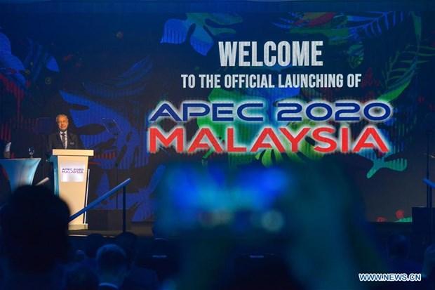 2020年APEC主席国将可持续发展选为讨论的重点 hinh anh 1