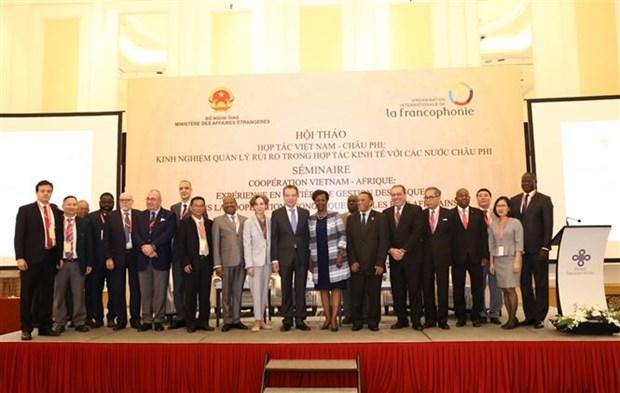 提升越南与非洲国家的经济合作效益 hinh anh 1