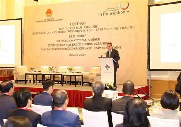 提升越南与非洲国家的经济合作效益 hinh anh 2