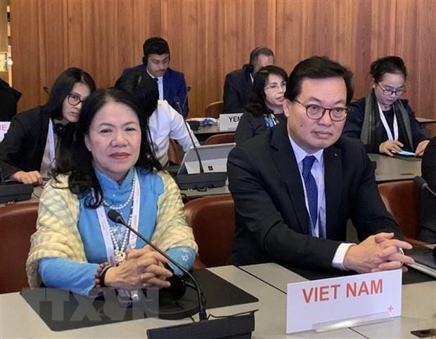 越南在第33届红十字与红新月国际大会上积极建言献策 hinh anh 1