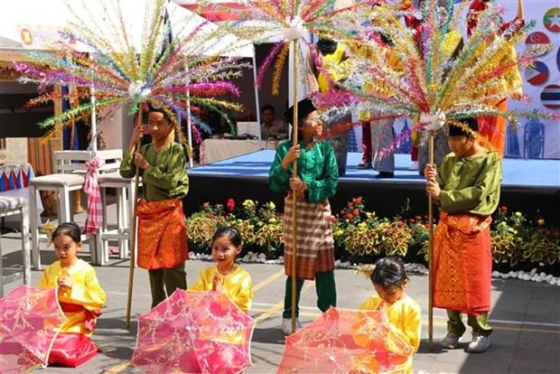 东盟各国在墨西哥推广传统文化之美 hinh anh 3