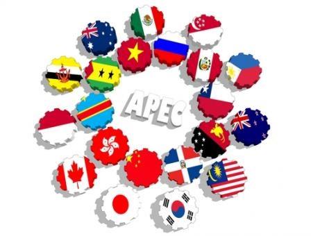 亚太经合组织成员经济体同意加强合作 hinh anh 1