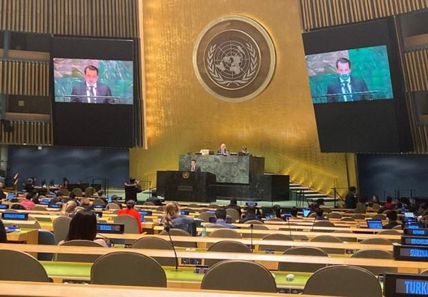 越南出席联合国关于大洋和海洋法的会议 hinh anh 1
