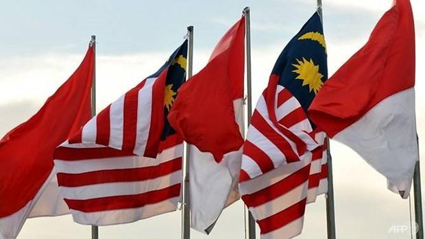马来西亚和印度尼西亚同意使用无人机巡逻边境 hinh anh 1