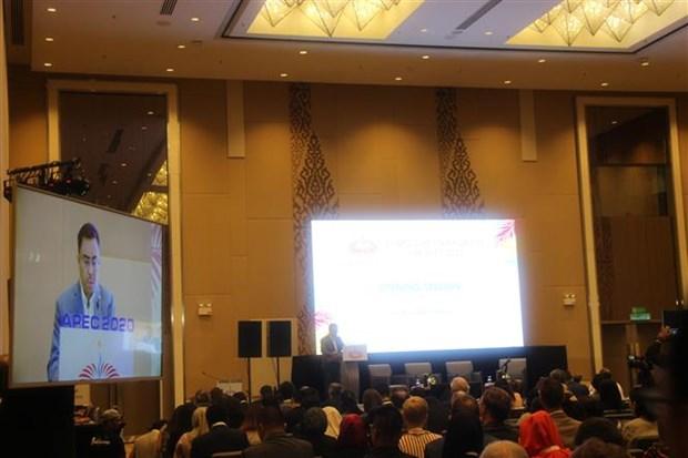 2020年APEC高官会在马来西亚举行 hinh anh 1