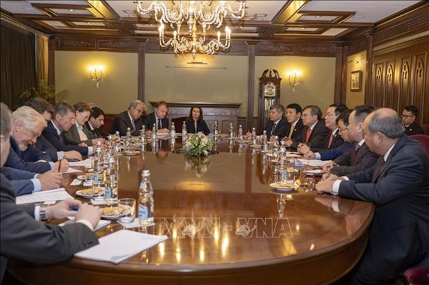 越南副总理王廷惠:越南重视与俄罗斯联邦的多方面合作 hinh anh 1