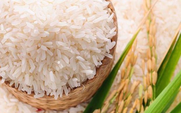 印尼力争2020年大米出口量达到50万吨 hinh anh 1