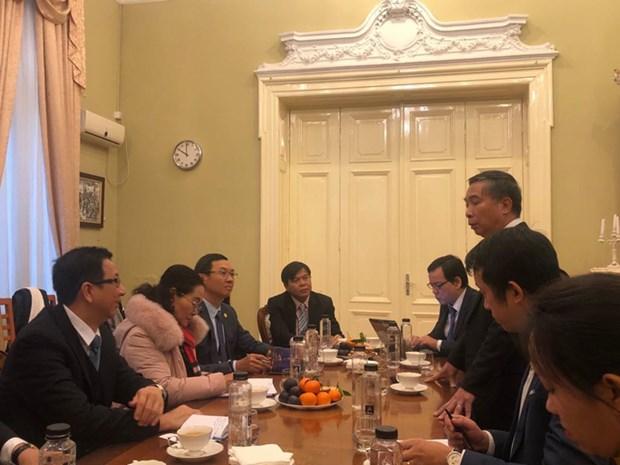 胡志明市人民议会高级代表团访问罗马尼亚 hinh anh 1