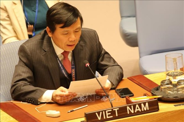 越南发布联合国安理会非常任理事国任期的优先事项 hinh anh 1