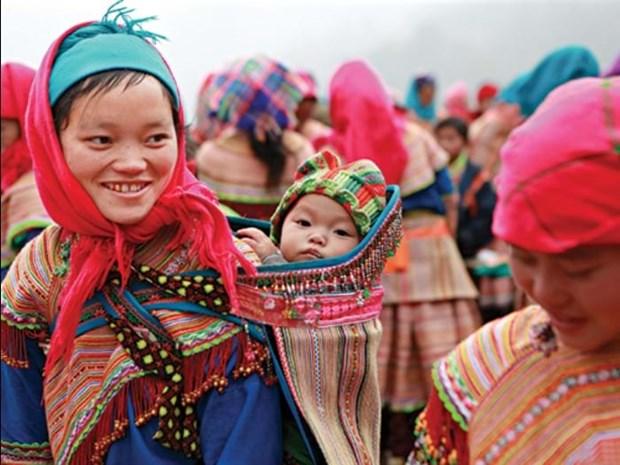携手改善越南北部山区和西原地区新生儿健康状况 hinh anh 1