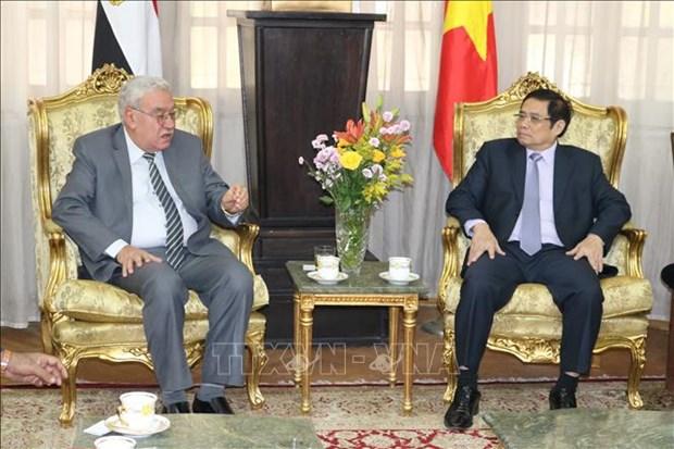 越共中央政治局委员、中央书记处书记、中央组织部部长范明正对埃及进行工作访问 hinh anh 1