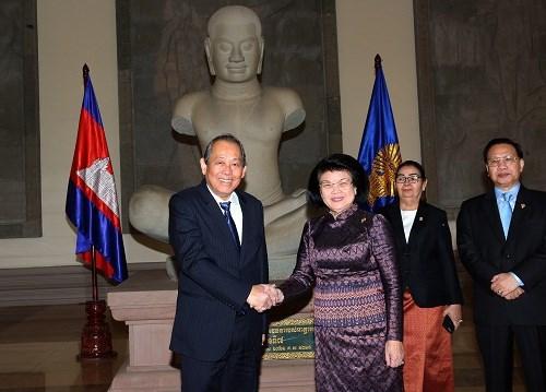 张和平建议柬埔寨支持东盟在东海问题上的共同立场 hinh anh 2