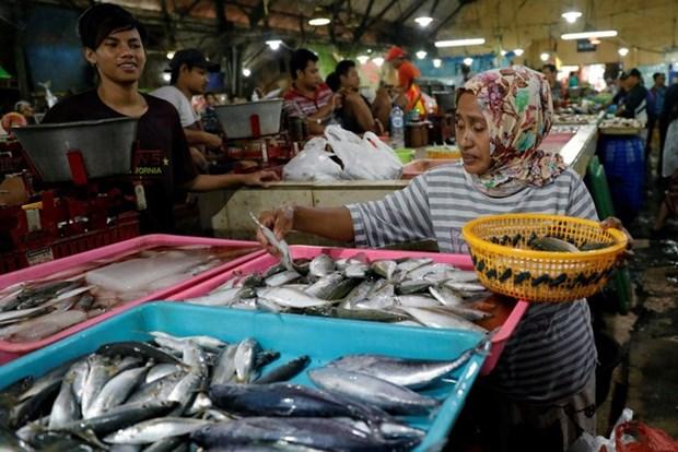 印度尼西亚计划建设国际海产品市场 hinh anh 1