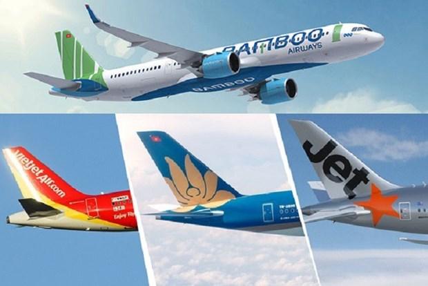 2019年越南各家航空公司旅客运输量达近5500万人次 hinh anh 1