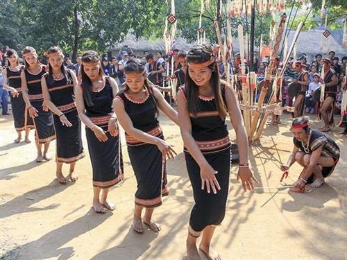 巴拿族传统舞蹈——爽舞 hinh anh 1