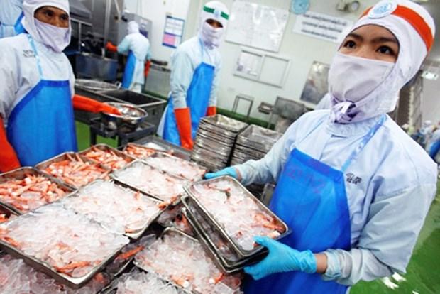 2020年泰国虾类产品出口可增长20% hinh anh 1