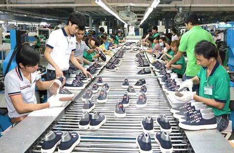 皮革制鞋业日益肯定其在国民经济中的重要作用 hinh anh 2