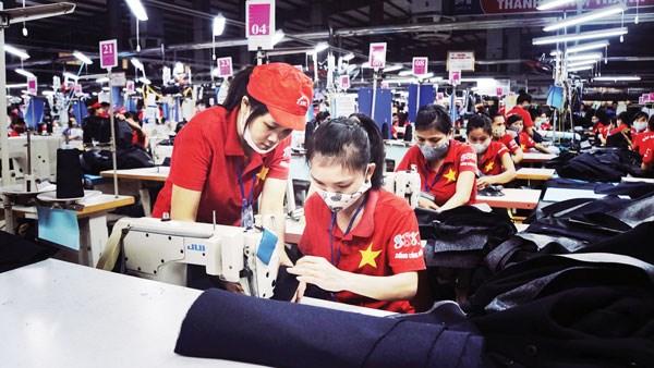 年底胡志明市就业市场呈现出活跃发展态势 hinh anh 1
