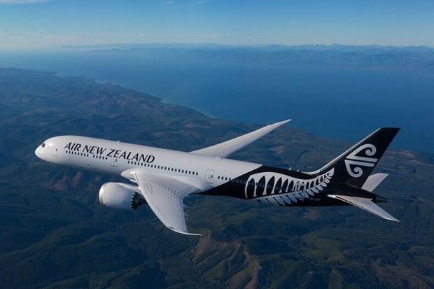 新西兰航空公司开通越南至该国第三大城市克赖斯特彻奇的航线 hinh anh 1