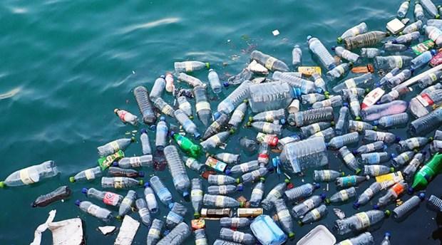 越南力争到2030年将海洋塑料垃圾减少75% hinh anh 1