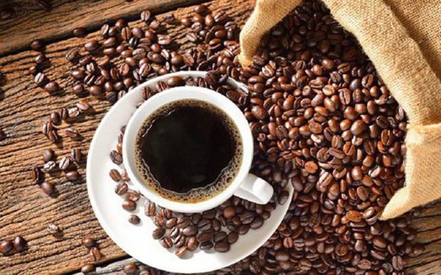 越南咖啡出口呈猛降趋势 hinh anh 1