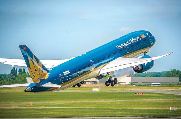 2019年越航机队与2008年增加2.5倍 hinh anh 1