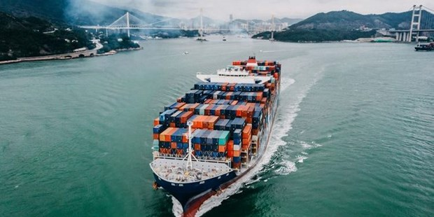 2020年越南力争实现出口增长率达到7-8%的目标 hinh anh 1