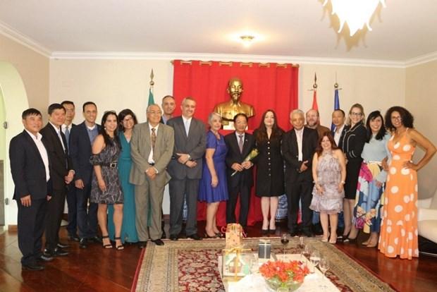 越南驻巴西大使:双边合作关系发展潜力有待挖掘 hinh anh 1